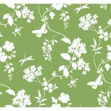 Green/White Wall Décor Wallcovering by York