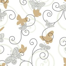White/Grey/Tan Bugs Wallcovering by York