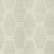 CY1573 Congas Stripe by York