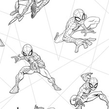 DI0940 Spider-Man Fracture by York