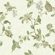 Cream/Beige/Tan Botanical Wallcovering by York