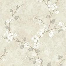 Cream/Beige/White Dogwood Wallcovering by York