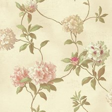 Beige/White/Peach Floral Wallcovering by York