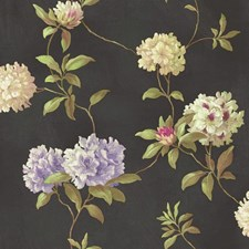 Black/Lavender/Pale to Medium Green Floral Medium Wallcovering by York