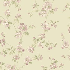 Beige Satin/Light to Dark Lavender/Light to Medium Green Floral Wallcovering by York