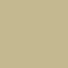 Gold/Beige Solids Wallcovering by York
