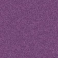 Purples Sidewall Wallcovering by York