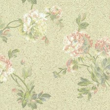 Beiges/Greens Floral Wallcovering by York