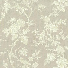 Beiges/White/Off Whites Floral Wallcovering by York