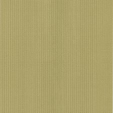 Olive Kids Wallpaper Wallcovering by Brewster