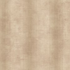 Bronze/Dusty Cream Stripes Wallcovering by York