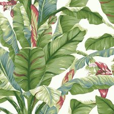 PSW1034RL Banana Leaf by York