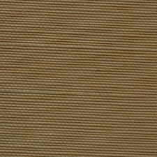 Dandelion Wallcovering by Innovations