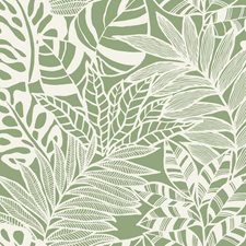 SS2577 Jungle Leaves by York