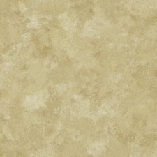 Beige/Gold Textures Wallcovering by York