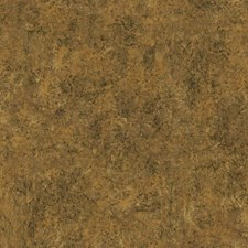 Gold/Bronze/Dark Brown Textures Wallcovering by York