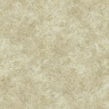 Cream/Warm Grey/Taupe Stone Wallcovering by York