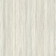 UC3851 Painted Stripe by York
