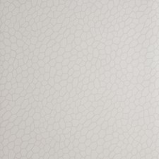 Parchment Wallcovering by Clarke & Clarke