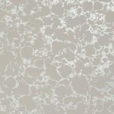 Blush/Gilver Wallcovering by Clarke & Clarke