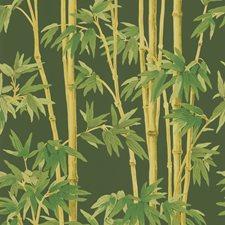 Brown/Green/Light Green Wallcovering by Kravet Wallpaper