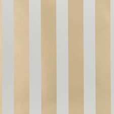 Gold Dots Wallcovering by Kravet Wallpaper