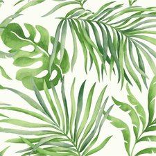 White/Green Tropical Wallcovering by Kravet Wallpaper