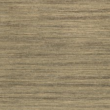Gold/Wheat Solid Wallcovering by Kravet Wallpaper