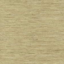 Cream/Beige Pearl/Grey Raised Prints Wallcovering by York