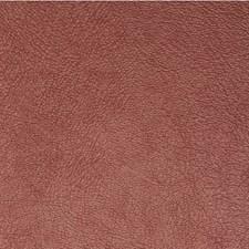Garnet Solid Wallcovering by Winfield Thybony