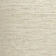 Glimmer Solid Wallcovering by Winfield Thybony