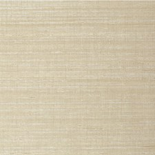 Matka Solid Wallcovering by Winfield Thybony
