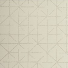 Gull Modern Wallcovering by Winfield Thybony