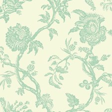 Cream/Robin Egg Blue Bohemian Wallcovering by York