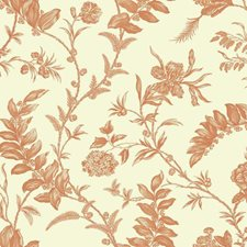 Cream/Orange/Russet Toile Wallcovering by York