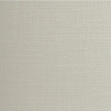 Cotton Solid Wallcovering by Winfield Thybony