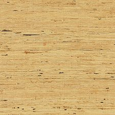 Honey Wallcovering by Scalamandre Wallpaper