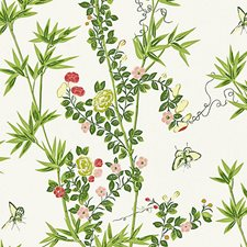 Spring Non-woven Wallcovering by Scalamandre Wallpaper