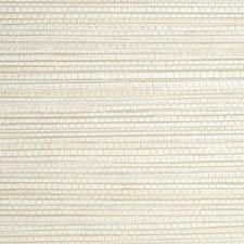 Pignoli Wallcovering by Scalamandre Wallpaper