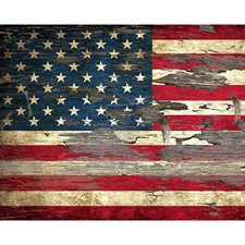 WR50535 Stars & Stripes Wall Mural by Brewster