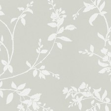 Green/White Wallcovering by Scalamandre Wallpaper
