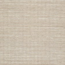 Shell Solid Wallcovering by Winfield Thybony
