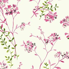 White/Bright Pink/Cream Floral Medium Wallcovering by York