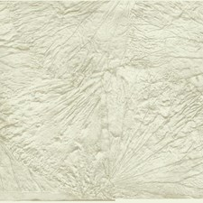 Pearl/Grey Botanical Wallcovering by York