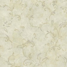 Beige/Taupe/Silver Traditional Wallcovering by York